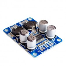 TPA3118 60W Digital 12V 24V Audio Amplifier Module